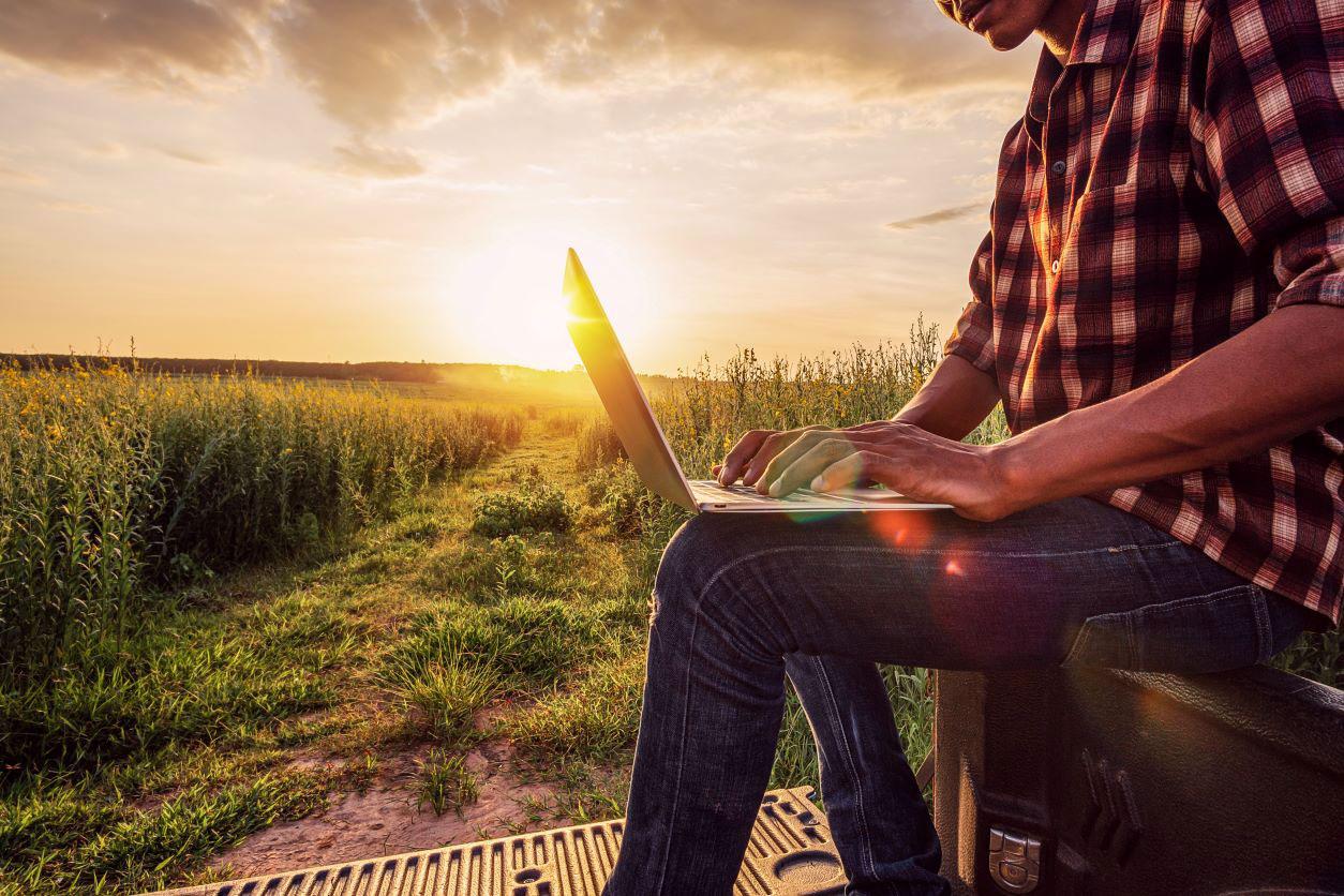 11Farmer in field with laptop